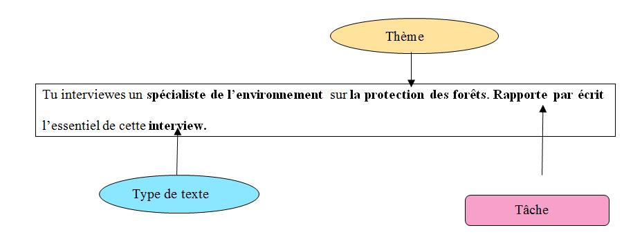 Projet 2 L Interview Questionner De Facon Pertinente